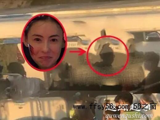 张柏芝被赶下飞机 背后真相实在让人气愤
