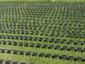 白宫外摆2万张椅子纪念新冠死者 究竟原因是什么?