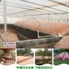 家庭沼气池装粪袋小型粪污发酵池类型及容积计算