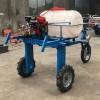 供应小型四轮打药机 玉米小麦农药喷洒机 小麦打药机