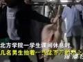 医学生抬数百斤猪做实验 画面令人哭笑不得!!