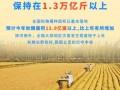 秋粮播种基本完成 全年粮食丰收有基础